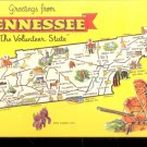 Greetings from Tennessee The Volunteer State      Postcard (#479)