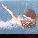 Weeki Wachee, Spring of Live Mermaids     Postcard (#565)