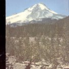 Mount Hood Oregon     Postcard  (# 580)