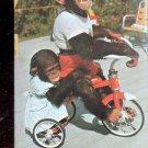 Me and My Shadow - Chimpanzee at Monkey Jungle, Florida  Postcard- (#  598)
