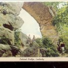 Natural Bridge  Natural Bridge State Park, Kentucky      Postcard- (#  605)