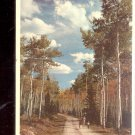 Greetings from Detroit- Nature Trail      Postcard- (# 653)