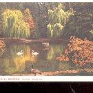 Vancouver, B.C., Canada-  The Swans, Stanley Park   Postcard- (# 657)