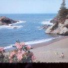 Pacific Ocean Seacoast   Postcard   (# 724)