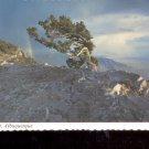 Sandia Crest- Albuquerque,, New Mexico     Postcard   (# 743)