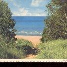 Beach Path- Michigan     Postcard   (# 751)