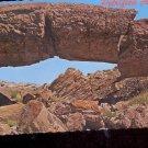 Bridge of Petrified Wood- Arizona      Postcard  (# 788)