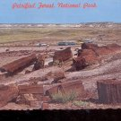 Petrified Forest National Park - Northern  Arizona      Postcard  (# 790)