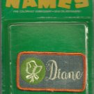 Name embroidery sew on patch- DIANE -   vintage 1973 (#32)
