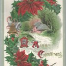 A Merry Christmas 1910  Postcard  (#201)