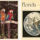 Lot of 2 Florida Postcards - Parrots & You are here!