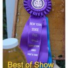 BEST HONEY in NEW YORK *  Jar of Honey Early Summer Wild Flower 8 oz