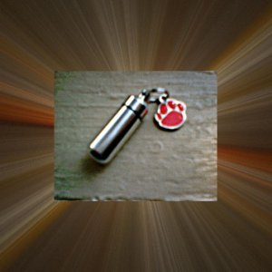 New Pet Cremation Urn/Vial Keychain with RED PAW