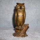 CAST IRON STILL BANK WISE OLD OWL CIRCA