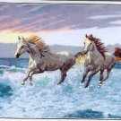 Wild Horses Gallery Crewel kit