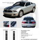 "Ford Mustang 2010 2011 2012 ""WILDSTANG 10"" Racing and Rally Stripes Kit"