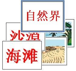 Nature Flash Cards - (Chinese)