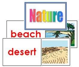 Nature Flash Cards - (English)