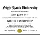 Diploma for Honda NIGHT HAWK motorcycle owner