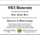 Diploma for Honda VTX motorcycle owner