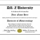 Diploma for Suzuki DR-Z motorcycle owner