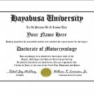 Diploma for Suzuki HAYABUSA motorcycle owner