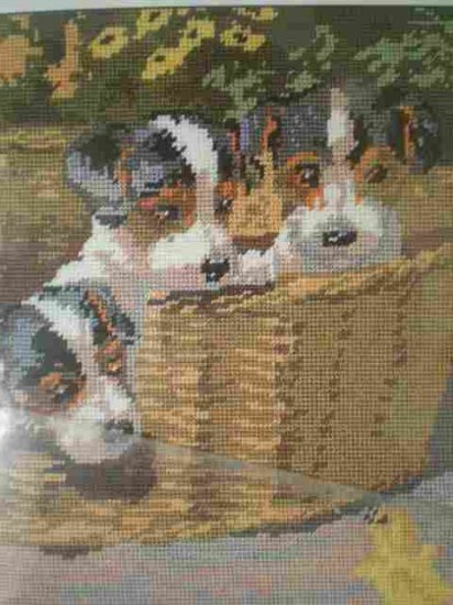 Penelope's Inquisitive Trio Tapestry/Needlepoint Kit ON SALE