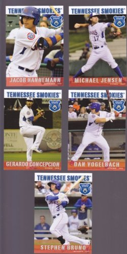 Michael Jensen   Lot of 5 - 2015 Tennessee Smokies