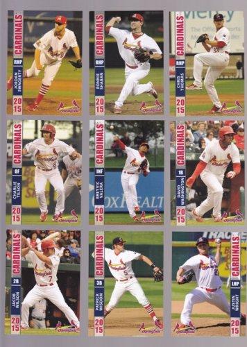 David Washington           2015 Springfield Cardinals   -  single card