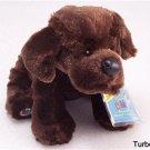 New Webkinz CHOCOLATE LAB Retired Dog Unused/Sealed HTF