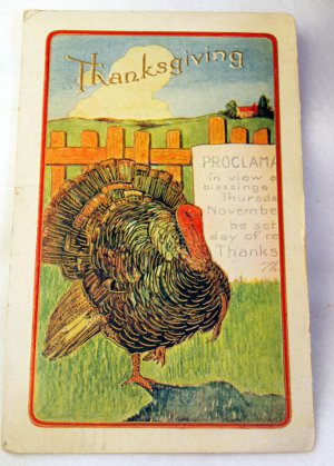 1909 Color Litho Postcard Thanksgiving Turkey Reading Proclamation.