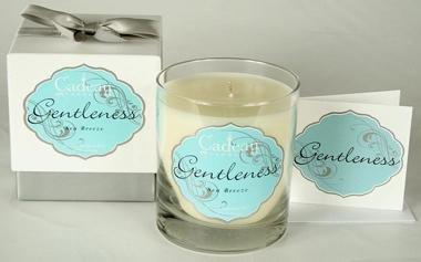 Cadeau Soy Gentleness Sea Breeze Jar Candle 10.5 oz