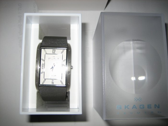 New Skagen Titanium Men 338 338LTTW $55 total