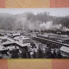 VINTAGE POSTCARD SCOTIA CALIFORNIA LUMBER YARD DEVOLITE PEERLESS rppc