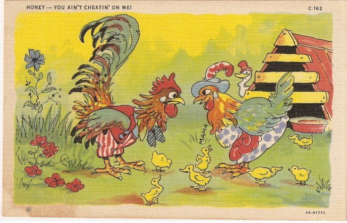 Vintage Postcard Honey You Ain't Cheatin' On Me Rooster Chicken Duck