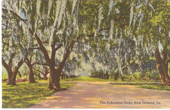 The Pakenham Oaks, New Orleans, LA postcard vintage