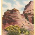 East Entrance Zion National Park Utah postcard vintage