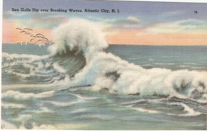 Sea Gulls over Breaking Waves Atlantic City NJ postcard