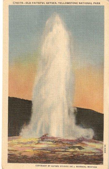 Old Faithful Geyser Yellowstone National Park vintage postcard