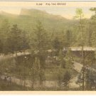 Pig Tail Bridge Black Hills South Dakota vintage postcard