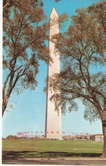 Washington Monument DC vintage postcard