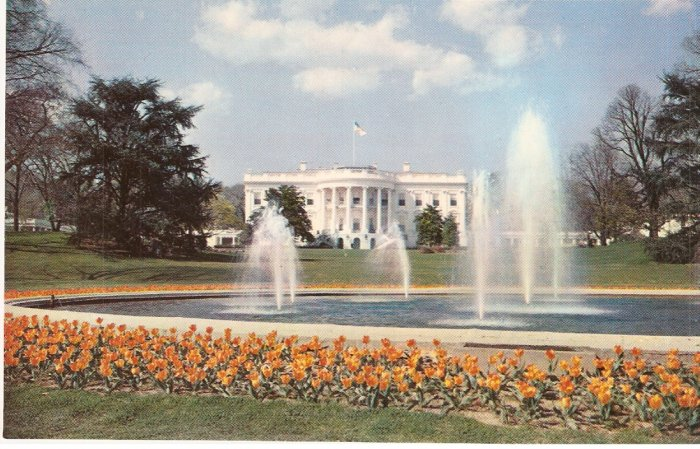 White House and Grounds Washington DC vintage postcard