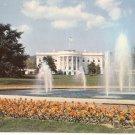 White House and Grounds Washington DC vintage postcard