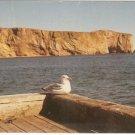 Perce Quebec Canada Seagull Quay vintage postcard