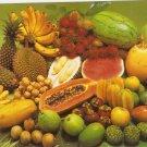 Malaysia fruits Malaysian rambutan durian atis guava longkong vintage postcard