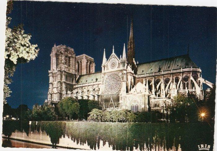 Notre Dame at night Paris France vintage postcard