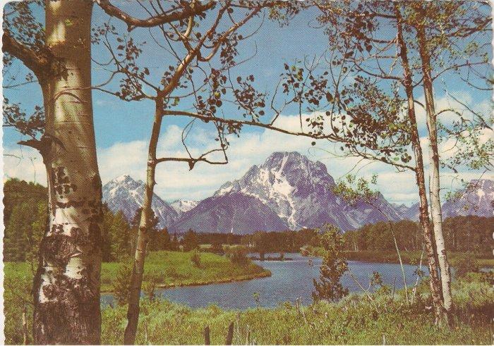 Grand Teton National Park Wyoming Mt Moran Snake River postcard
