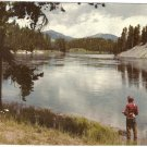 Fishing Yellowstone River vintage postcard