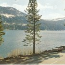 Donner Lake California US Hwy 40 Sierras vintage postcard