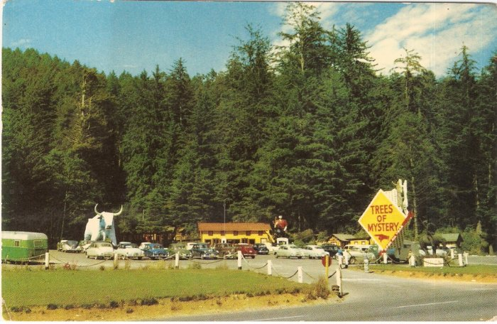 Trees of Mystery Redwood Highway California vintage postcard